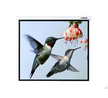 Экран Lumien 220х220см Master Picture LMP-100129 1:1 настенно-потолочный рулонный | интернет-магазин TOPSTO
