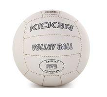 Мяч волейбольный Kicker Tip | интернет-магазин TOPSTO