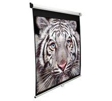 Экран Elite Screens 152х203см Manual M100NWV1 4:3 настенно-потолочный рулонный белый | интернет-магазин TOPSTO