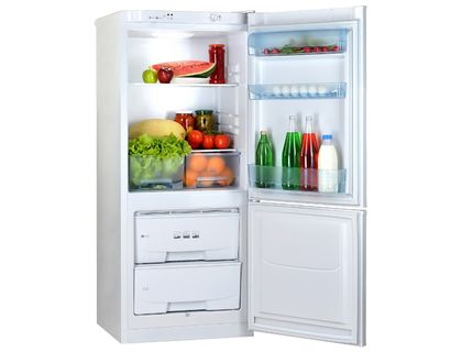Холодильник POZIS RK-101 A серебристый | интернет-магазин TOPSTO
